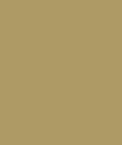 De Amsterdamse Manege Logo